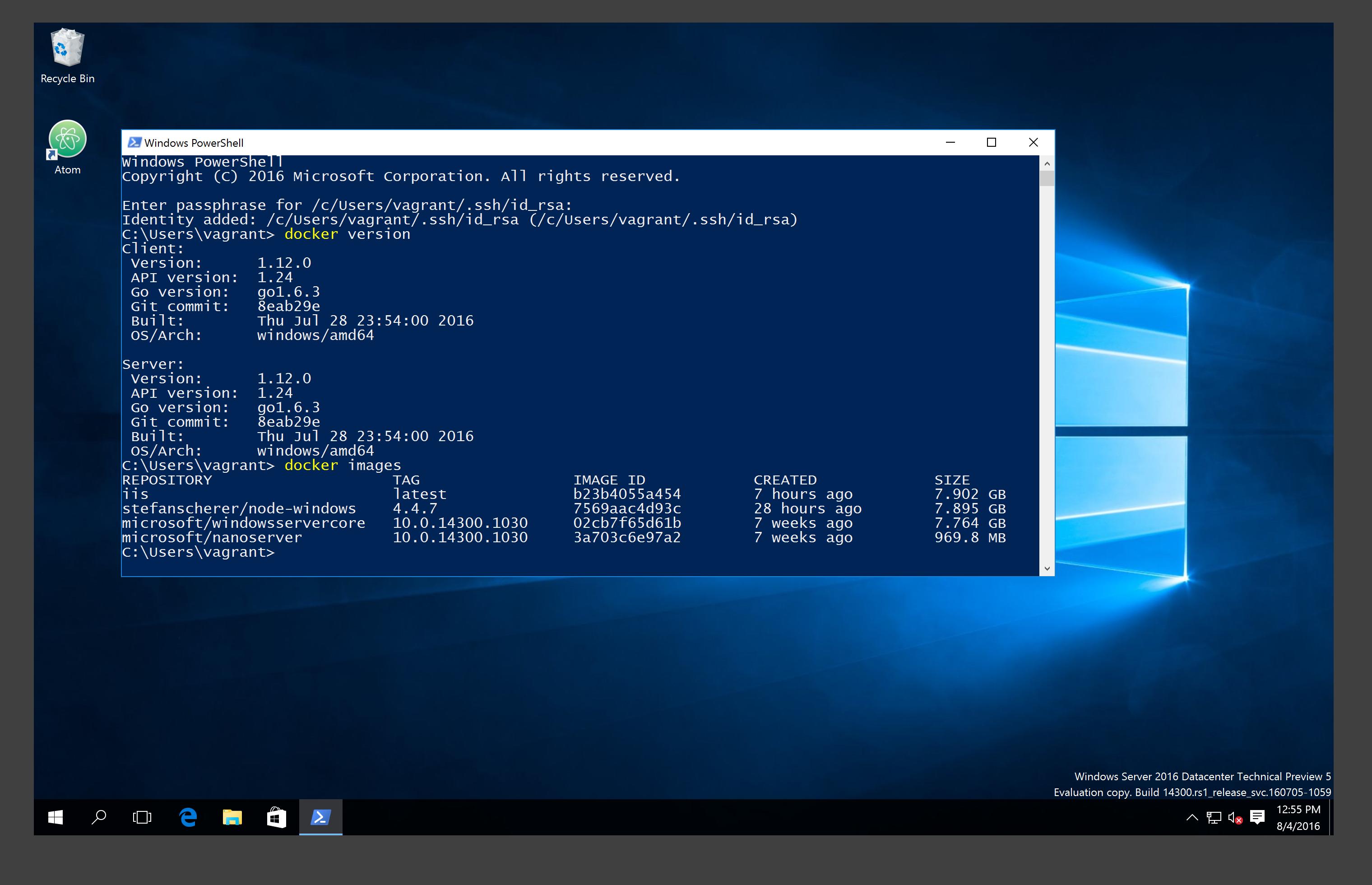 Adding Hyper-V support to 2016 TP5 Docker VM